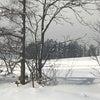 近くの雪景色の画像