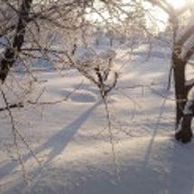 寒い日のコッテリな一…