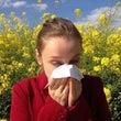 花粉症とアレルギーの…