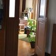 「家事のしすぎ」が日…