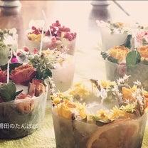 ニャーニャーにゃ〜の日にキャンドルの花が咲きました❣️の記事に添付されている画像