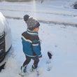 子供達は雪が積もると…