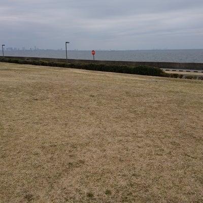 今朝の海辺の早朝ランニング後記5(海辺のウッドデッキテラス)の記事に添付されている画像