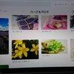 Pinterest「ハーブ&アロマ」制作中