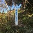 福島のさくら