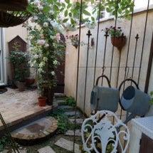 ※秘密の花園(新しい…