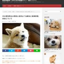 犬の慢性膵炎の原因と症状は?治療法と食事管理、余命についての記事に添付されている画像