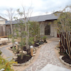 庭造りの画像