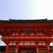 伏見稲荷~下鴨神社の…