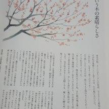 梅という木の素晴らし…