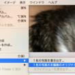 【mac】写真をコピ…