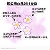 桃の花ネイル &桃の花の画像