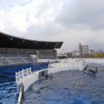 京都マラソン前日