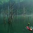 2018「自然湖ネイ…