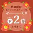 3/6(火)まで!ポ…