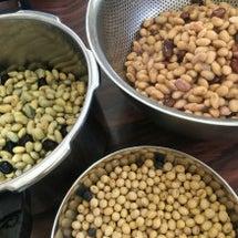 大豆の仕入れ