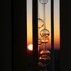 南東向きリビングお気に入りの理由。と、楽天SSポチレポ!の画像
