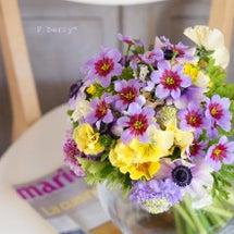 春の小花のミルフルー…