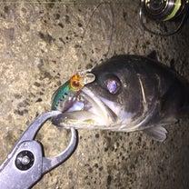 2018年3月2日 旧江戸川釣行の記事に添付されている画像