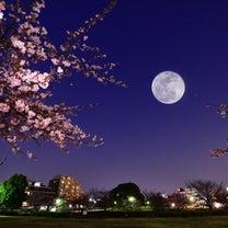 愛道❤️Chandra Yoga Schedule 春分の日からのスケジュールの記事に添付されている画像