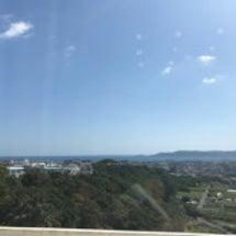 沖縄が大好きなむーこ…
