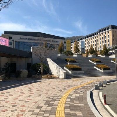 釜山外国語大学の記事に添付されている画像