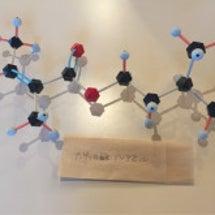ハーブと花精油の化学
