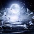 月のパワーの活かし方