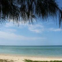 懐かしくなった沖縄の…