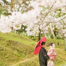奈良の桜♪♪
