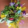 春を呼ぶ花束の画像
