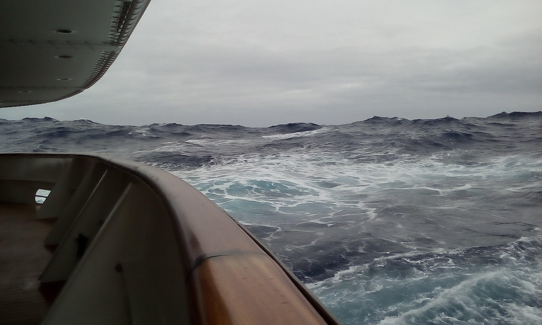 アホウドリは飛んでいくいざドレーク海峡 添乗員 森田