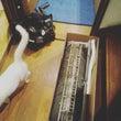 《 エアコン修理と料…