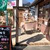 『どれぃぶ 雑貨 マルシェ 』開催中! 西尾市アクセサリーショップの画像
