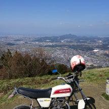 長崎県松浦市、イタチ…