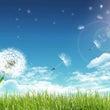 【花粉対策】院内のリ…