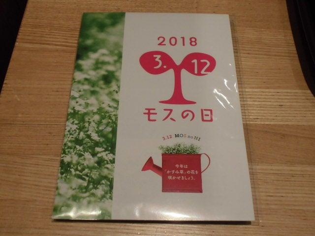 かすみ草の種