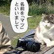 新173話 【 マツ…