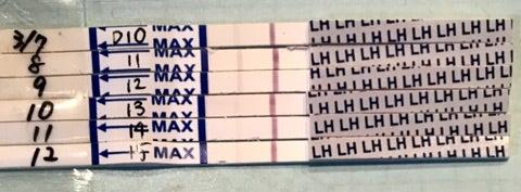 ワンステップ 排卵検査薬