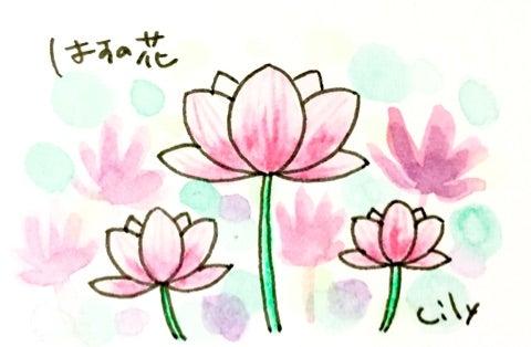 ハスの花 まめしばリリーの簡単お絵かき手帳