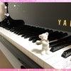 「ピアノコード奏法講座」の説明会に行ってきましたの画像