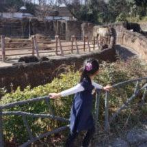 多摩動物公園へ♪