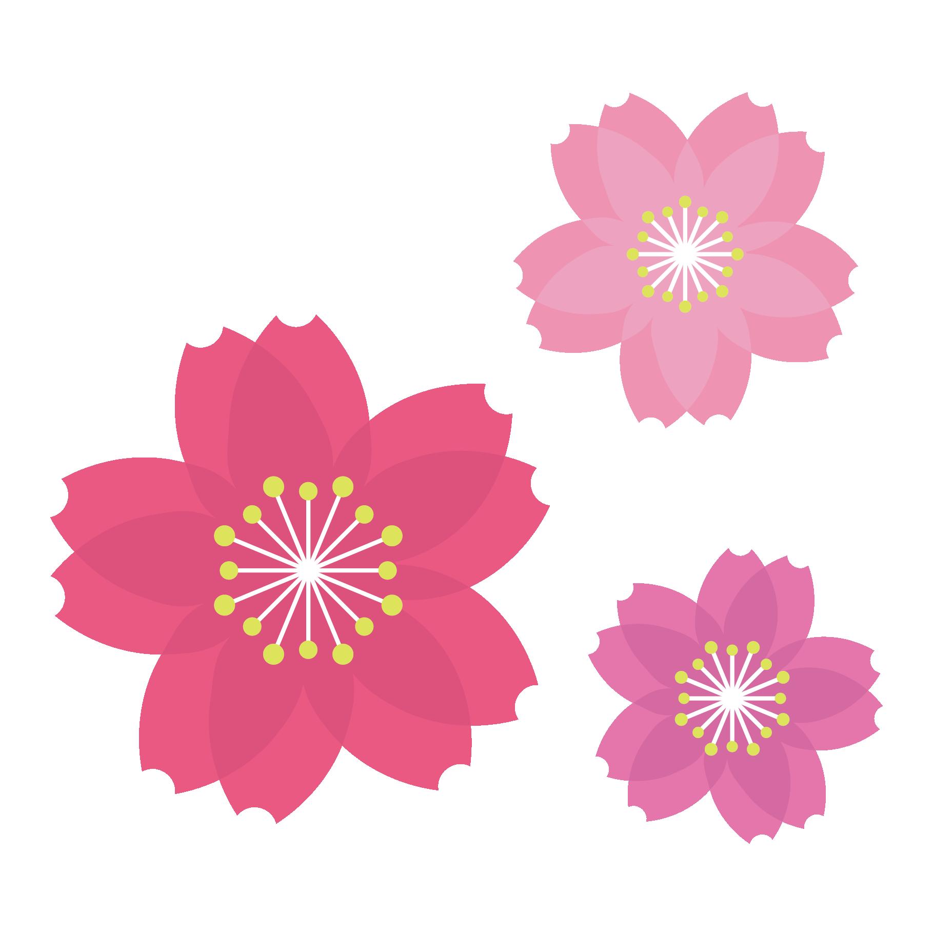 「桜 素材」の画像検索結果