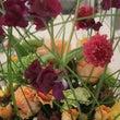 パリのお花屋さん デ…