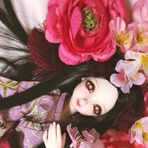 Flower Rai…