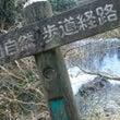 渓流釣りにオシドリー…