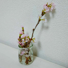 18-03-14-19-52-41-714_deco.jpg