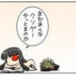 【FateGO】ここ…