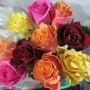愛の花 心に咲く薔薇