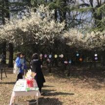 3/14 卒会式☆や…